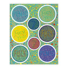 Color Blind Picture Color Blind Test Sticker Decal Sheets Human