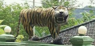 Tiger Meme - indonesian military destroys funny tiger statue after it becomes a meme