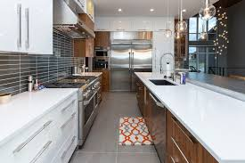 Kitchen Cabinets Des Moines Ia Seattle Zebra Wood Cabinets Kitchen Modern With Freestanding Rais