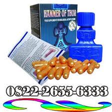 0822 2655 6333 agen hammer of thor asli di papua barat hammer of