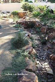 dry stream bed in the garden