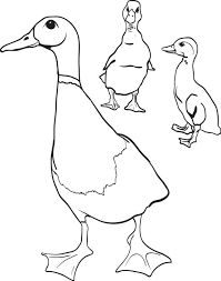 free printable mother duck ducklings coloring