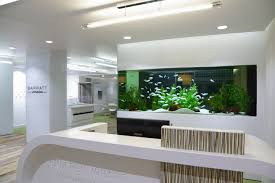 fish tank for office home design ideas