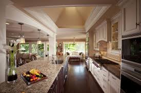 kitchen ideas galley attractive home design
