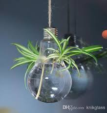 light bulb hanging glass terrarium water planter vase hydroponics