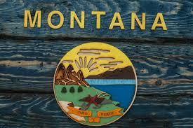 montana state flag handmade distressed wooden vintage art