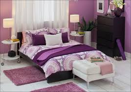 Pink Down Comforter Bedroom Purple Twin Bed In A Bag Lavender King Size Quilts Twin