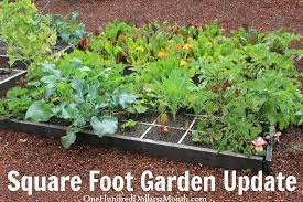 square foot gardening archives one hundred dollars a month