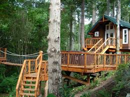 furniture awesome about treehouse designs free with nice bridge