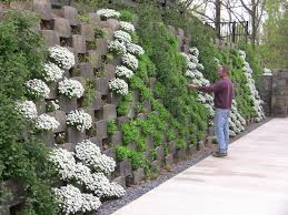 Garden Wall Retaining Blocks by Living Retaining Wall Maybe A Possible Vertical Strawberry Patch