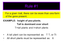the rules of modern genetics look around the room you may share