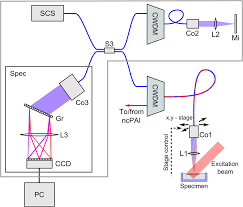 multimodal noncontact photoacoustic and optical coherence