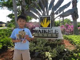 looking for a halloween costume in hawaii teddy bears