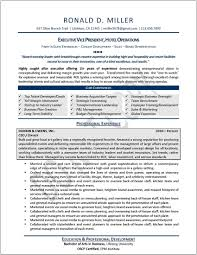 Executive Resume Template Free Free Healthcare Resume Templates Resume Template And