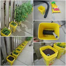 self watering container garden