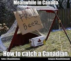 Funny Canadian Memes - 523 best meanwhile in canada images on pinterest funny stuff