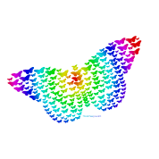 rainbow butterfly silhouette t shirt spreadshirt
