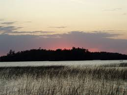 Minnesota scenery images Free photo reeds scenery minnesota lake sunset summer nature max jpg