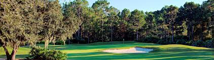 daytona beach golf courses cypress head golf club port orange fl