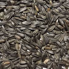 wildlife u0026 exotic bluebonnet feeds