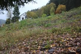 Bad Berleburg Grundstück Zum Verkauf Kreis Siegen Wittgenstein Mapio Net