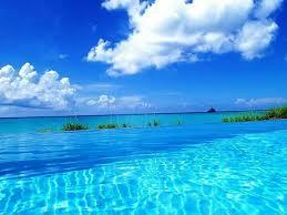 Florida what is a travel agent images 80 best destination key largo fl images key largo jpg