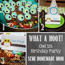 owl birthday party owl 1st birthday party mostly