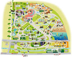 zoo map clipart 30
