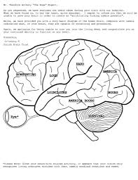 images of human brain pictures of brain anatomy coloring book at