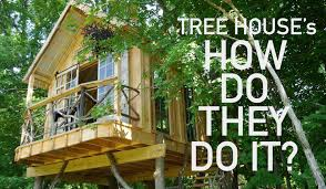 building your own tree house how to build a house tree house building garnier limb attachment techniques in a ny