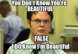 You Are Beautiful Meme - meme maker you dont know youre beautiful false i do know im