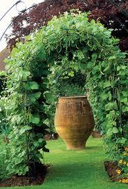 What Vegetables Need A Trellis 1 001 Backyard Ideas For 2017 Decks Gardens Pools U0026 More