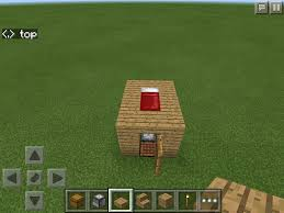 Minecraft Home Decorations Plain Smallest House In The World Minecraft For Inspiration Decorating