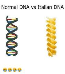 Dna Meme - italian dna how italians do things know your meme