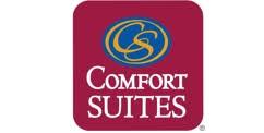 Comfort Suites Michigan Avenue Chicago Hotel Comfort Suites Michigan Ave Chicago Il Booking Com