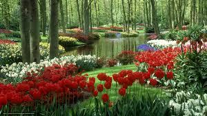 flowers gardens pictures u2013 cicaki