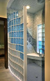 Glass Block Designs For Bathrooms by Best 25 Glass Shower Walls Ideas On Pinterest Glass Shower