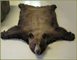 Polar Bear Fur Rug Enjoyable Inspiration Ideas Bear Skin Rugs With Head Stunning