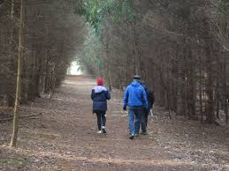 hike and christmas tree farm in cuyahoga valley national park