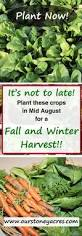 best 25 winter greenhouse ideas on pinterest garden guide fall