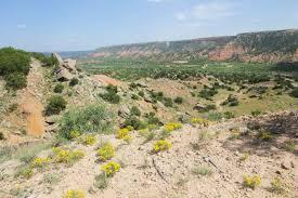 Palo Duro Canyon State Park Map Rock Garden Trail To Scrub Oak Spur In Palo Duro Canyon State Park