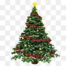 christmas ribbon christmas tree christmas christmas tree
