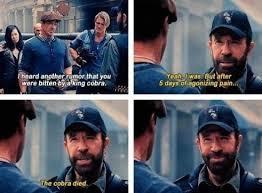 Meme Chuck Norris - norris meme