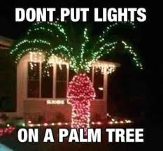Hilarious Christmas Memes - and here are the absolute funniest christmas decorations ever