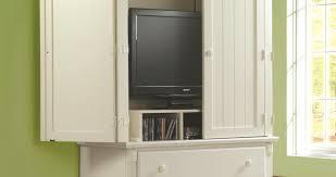 Tv In Kitchen Cabinet Cabinet Wonderful Hidden Tv Cabinet Martin Furniture Shallow