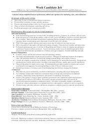 sample resume of marketing executive television merits and