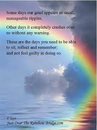 Poems Of Comfort For Loss Best 25 Pet Loss Quotes Ideas On Pinterest Dog Loss Quotes Dog