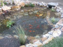 Backyard Fish Ponds by Aerating Your Backyard Fish Pond Water Pacific Dreamscapes
