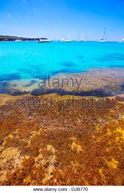 Best Beaches In World Best Beaches In Spain Stock Photos U0026 Best Beaches In Spain Stock