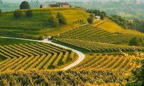 si e de l unesco l italia candida il paesaggio prosecco al patrimonio unesco la